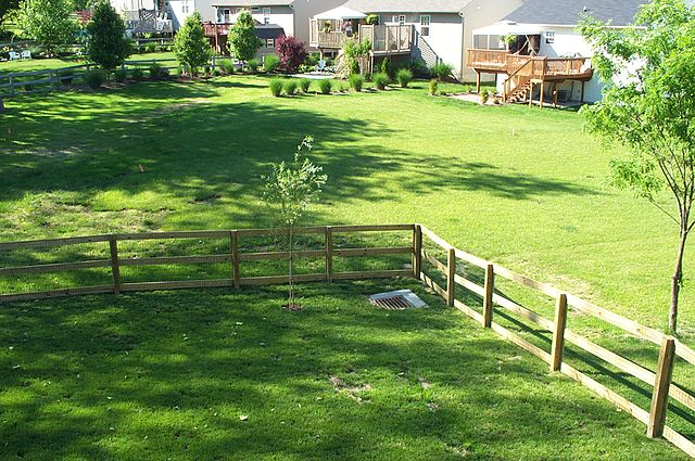 640px-Typical_suburban_backyard